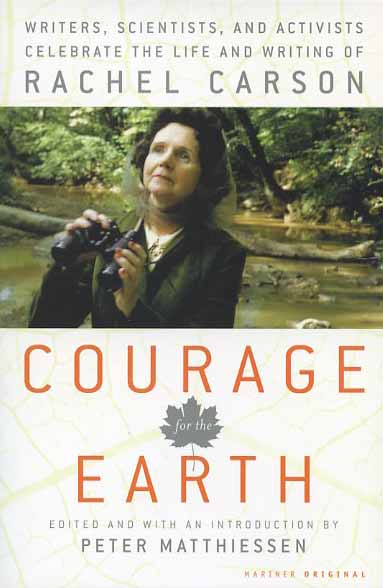 a lifetime of courage essay