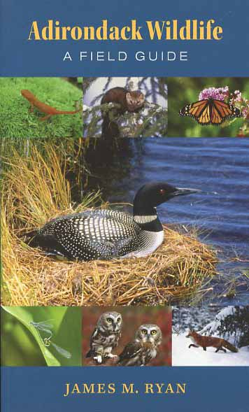 Adirondack Wildlife: A Field Guide