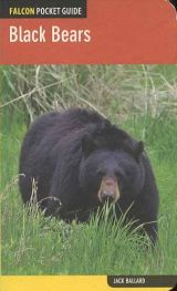 Black Bears (A Falcon Pocket Guide)