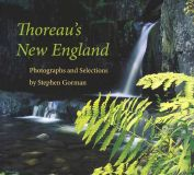 Thoreau's New England